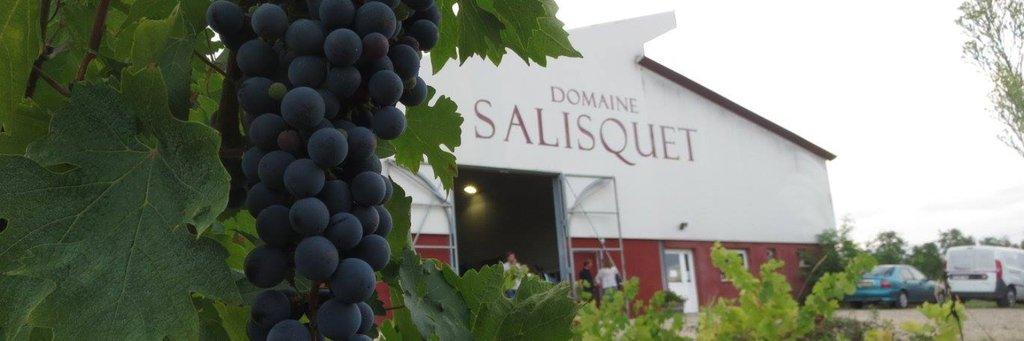 Domaine Salisquet : vins Bio, vigneron  indépendant, AOC Buzet
