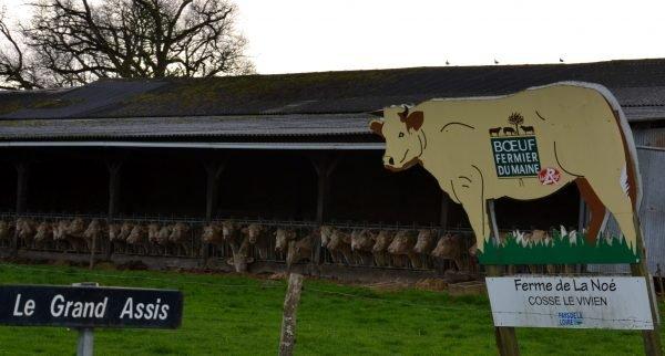 Gaec Vallée Frères - Viande bovine