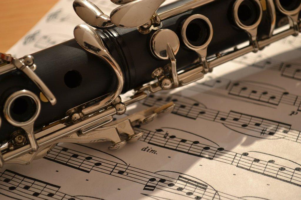 Ecole de Musique Instruments Chant et Animation