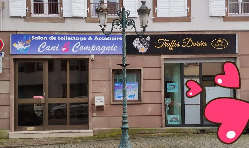 Cani&Compagnie, salon de toilettage