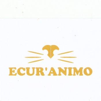 ECUR'ANIMO