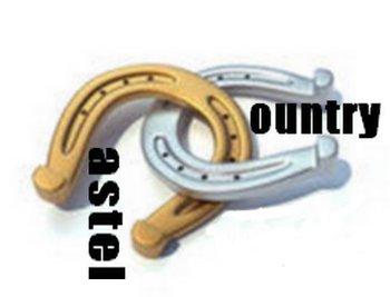 logo Castel country