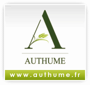 Authume