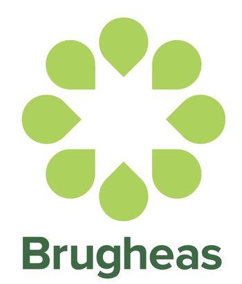 Brugheas